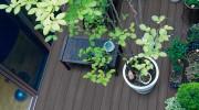 植栽と彩木ウッドデッキ