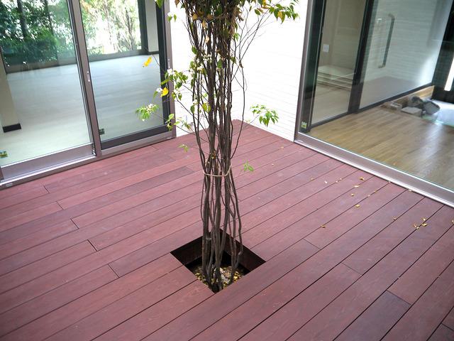 彩木ウッドデッキの桧皮の魅力