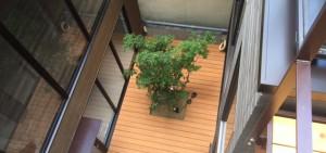 彩木に新しい断面形状が登場