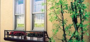 窓下を飾る彩木フラワーボックス(番外編)