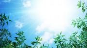 あやかの彩木探訪!<br>彩木ウッドデッキで日光浴のススメ(その03)