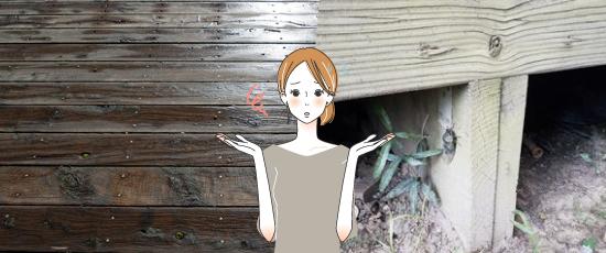 ウッドデッキの床下周辺に虫が発生する原因3つ